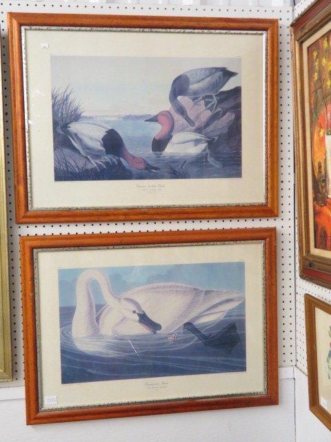 2 J.J. Audubon Prints,