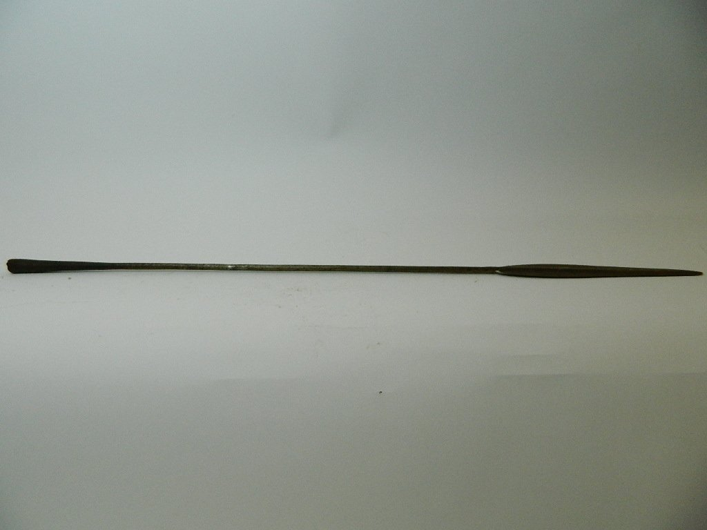 Metal Spear with Wooden Handle