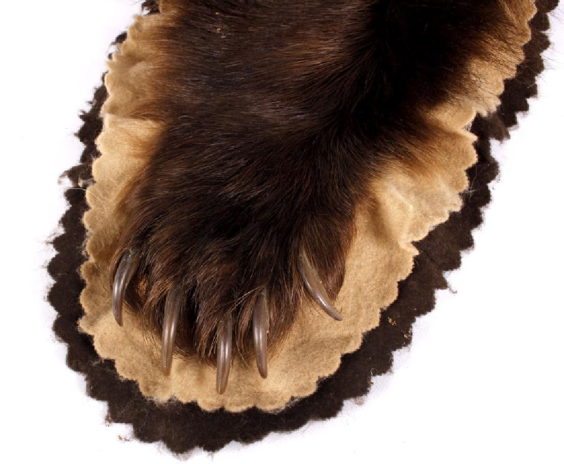 Montana Black Bear Taxidermy Rug Mount - 4