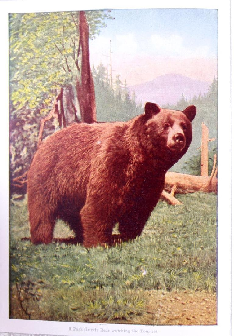 Early Yellowstone Park Railroad Guide Books - 6