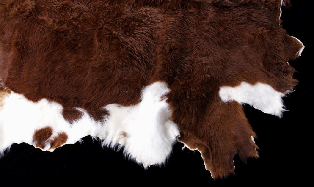 Tanned Hereford Cow Hide Rug - 4