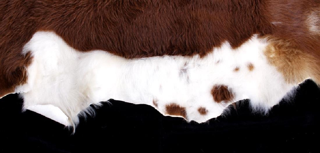 Tanned Hereford Cow Hide Rug - 7