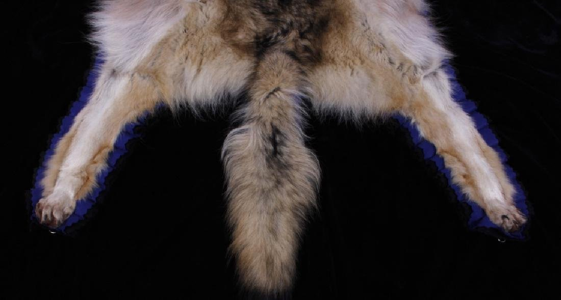 Montana Timber Wolf Taxidermy Double-Felted Rug - 3