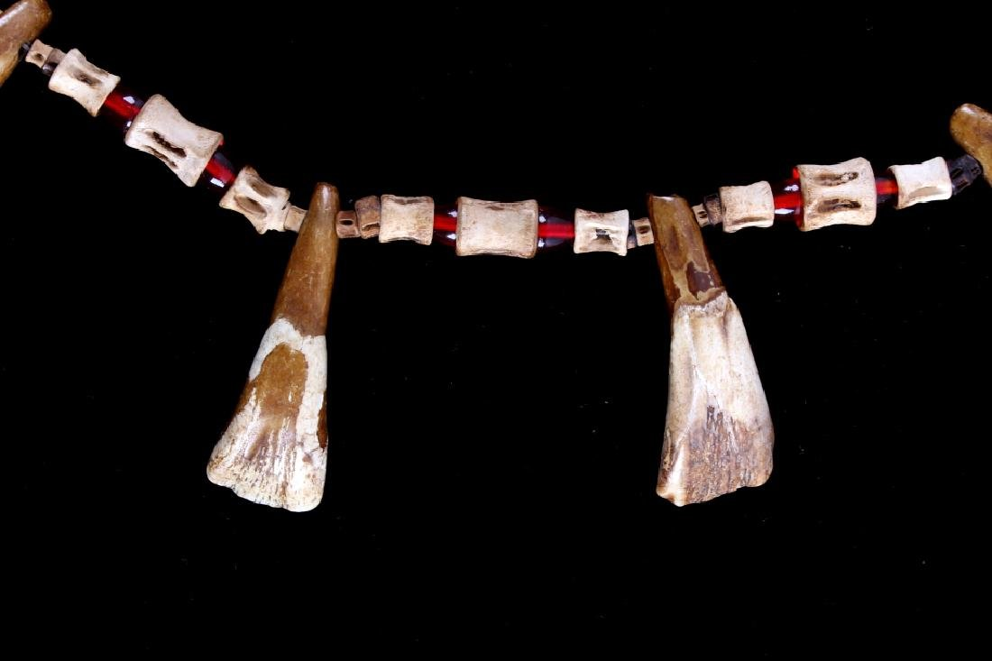 Plains Indian Buffalo Teeth Beaded Necklace 19th C - 4