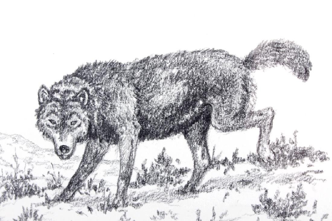 George Dabich Original Wolf Pencil Sketch - 4