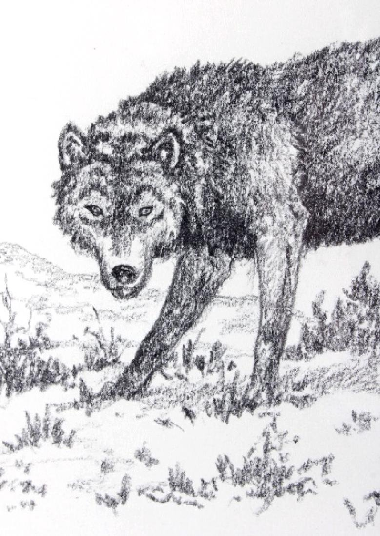 George Dabich Original Wolf Pencil Sketch - 6
