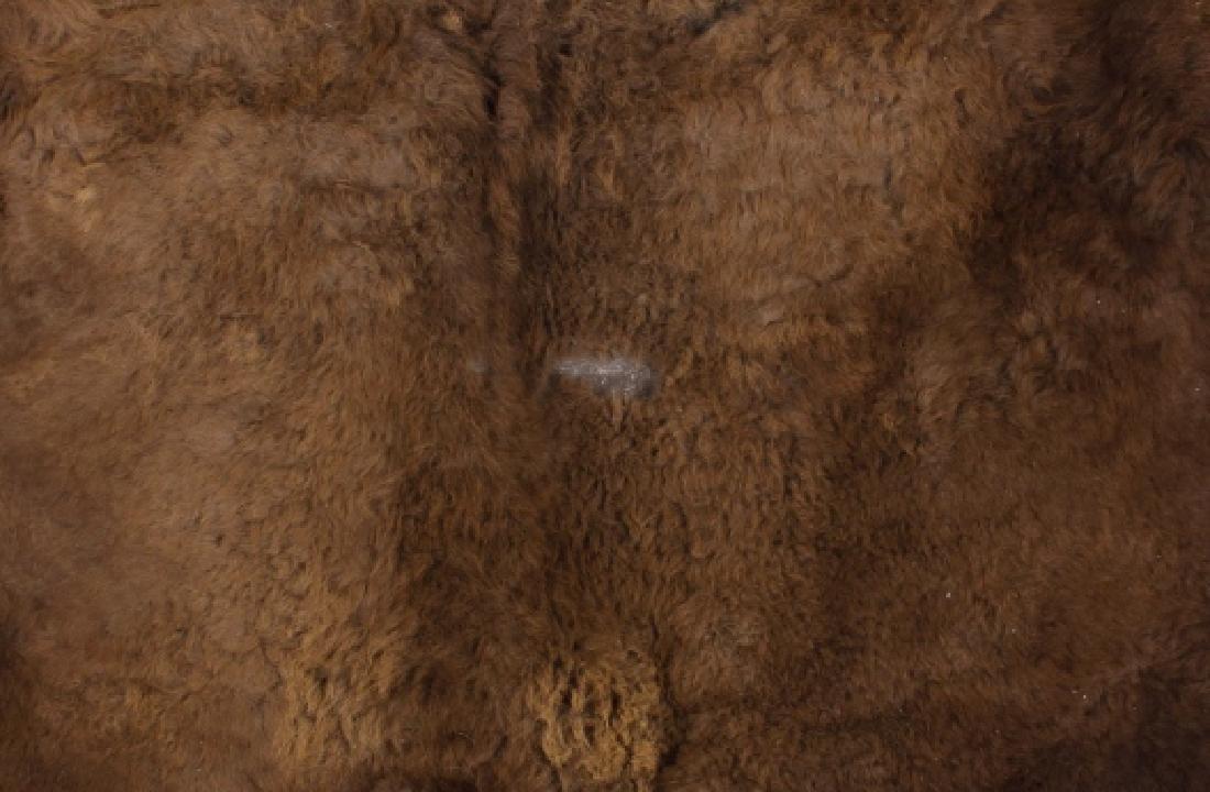 Wild Montana Trophy Buffalo Fur Hide Rug - 3