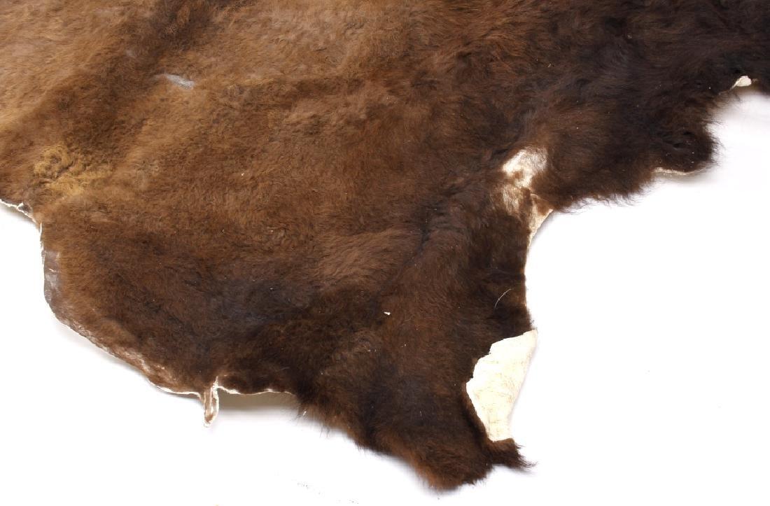 Wild Montana Trophy Buffalo Fur Hide Rug - 4