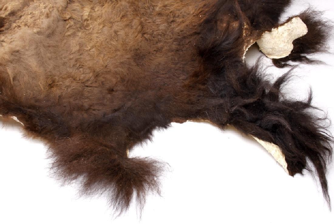 Wild Montana Trophy Buffalo Fur Hide Rug - 6
