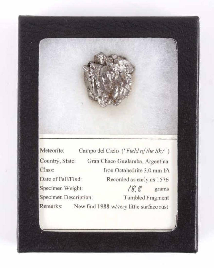 Collection of Meteorite Fragments - 3