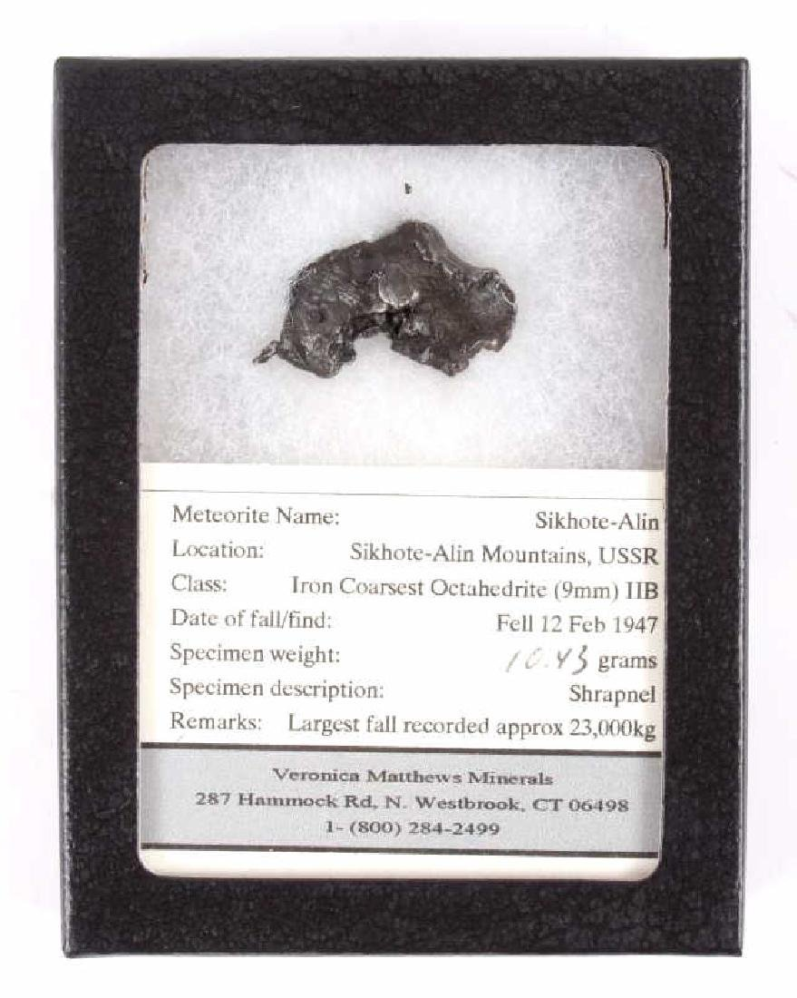 Collection of Meteorite Fragments - 4