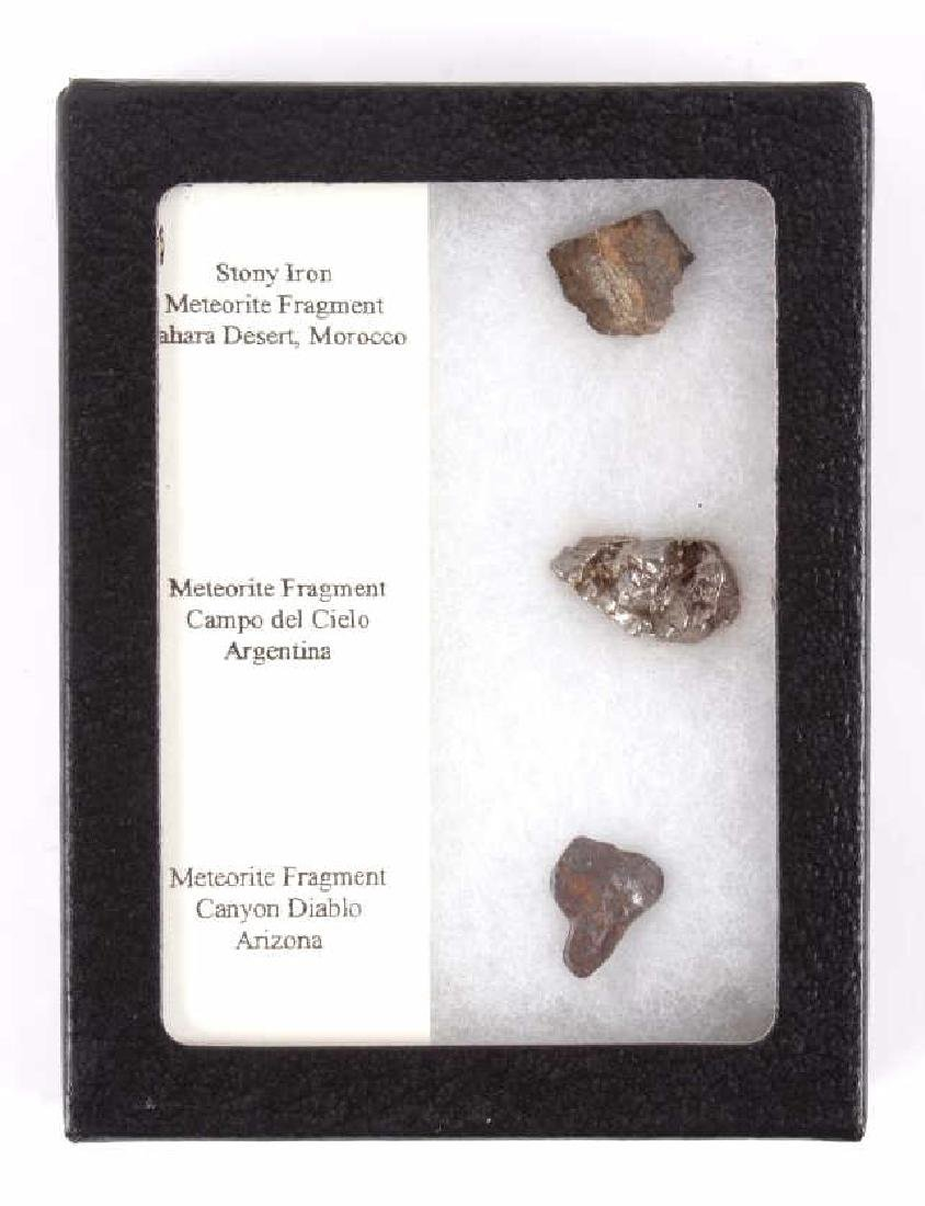 Collection of Meteorite Fragments - 5