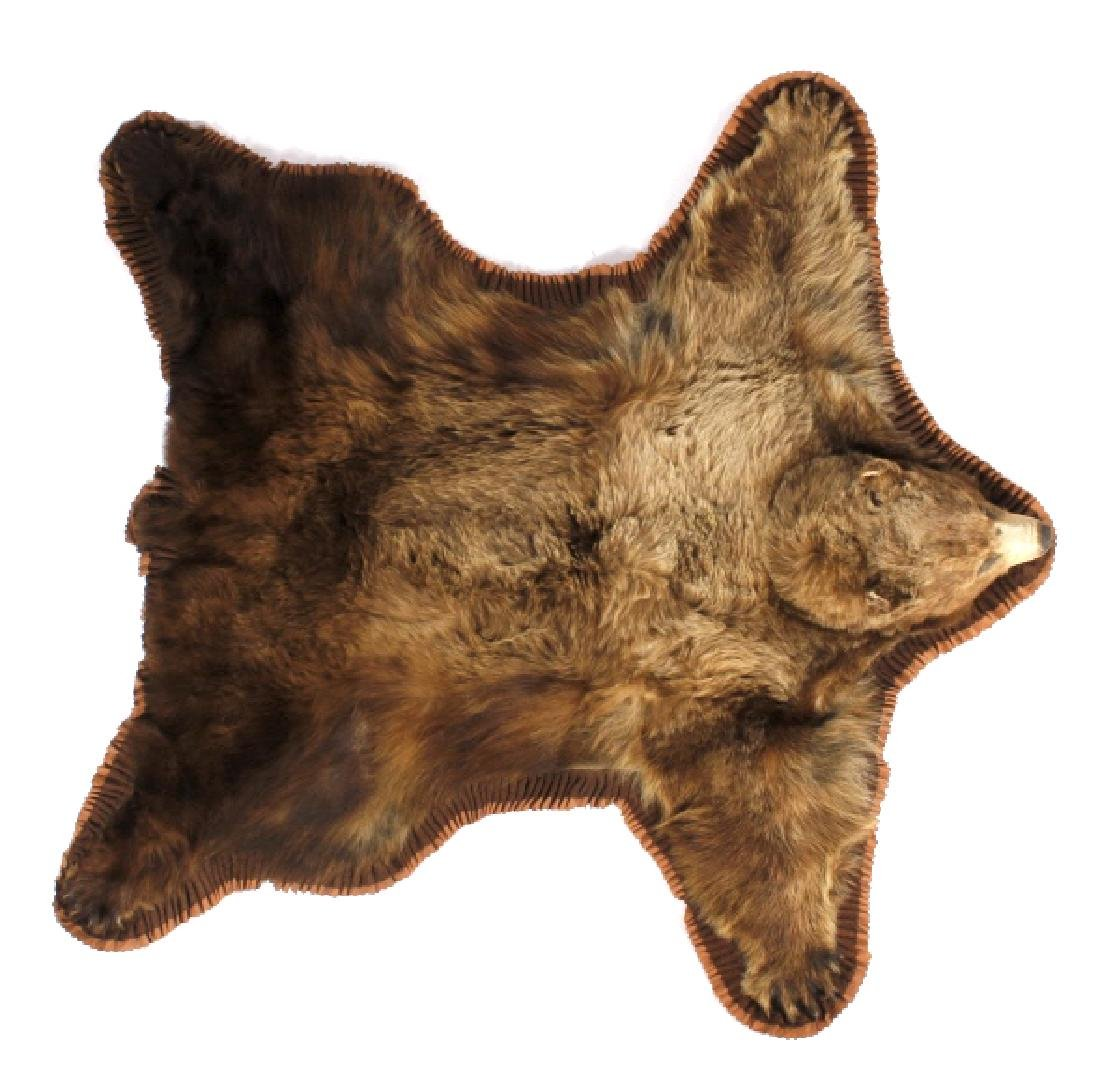 Montana Cinnamon Black Bear Taxidermy Trophy Rug