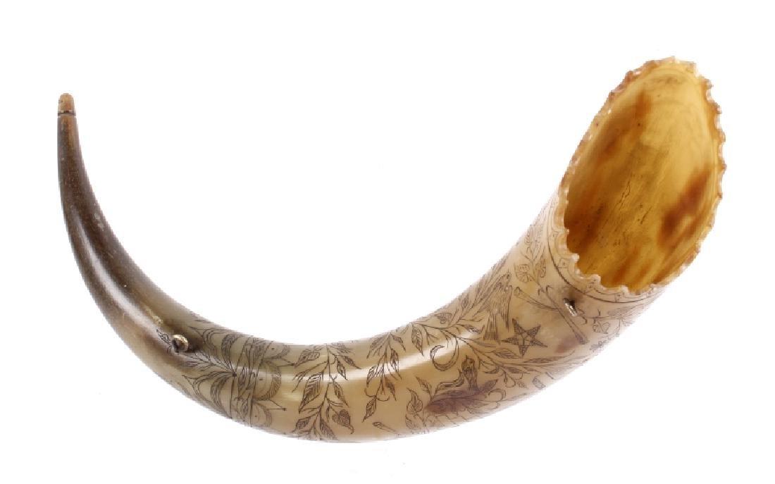 Exceptional Scrimshaw Steer Horn