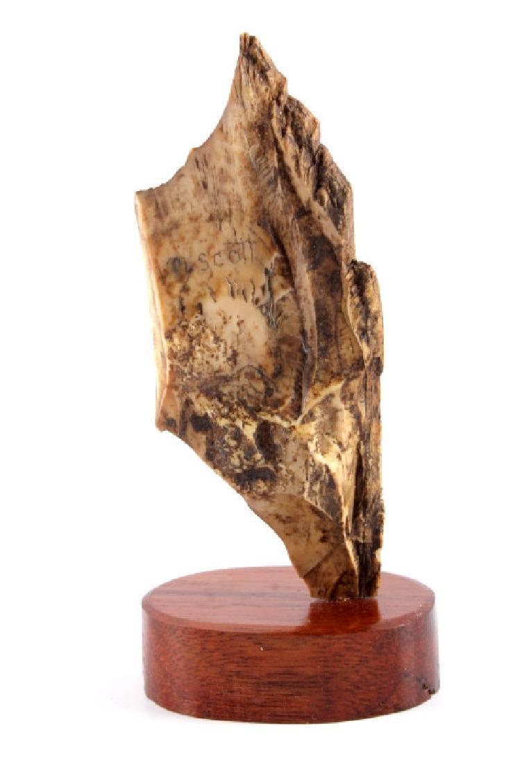 Ancient Wooly Mammoth Scrimshaw Tusk Alaska - 5