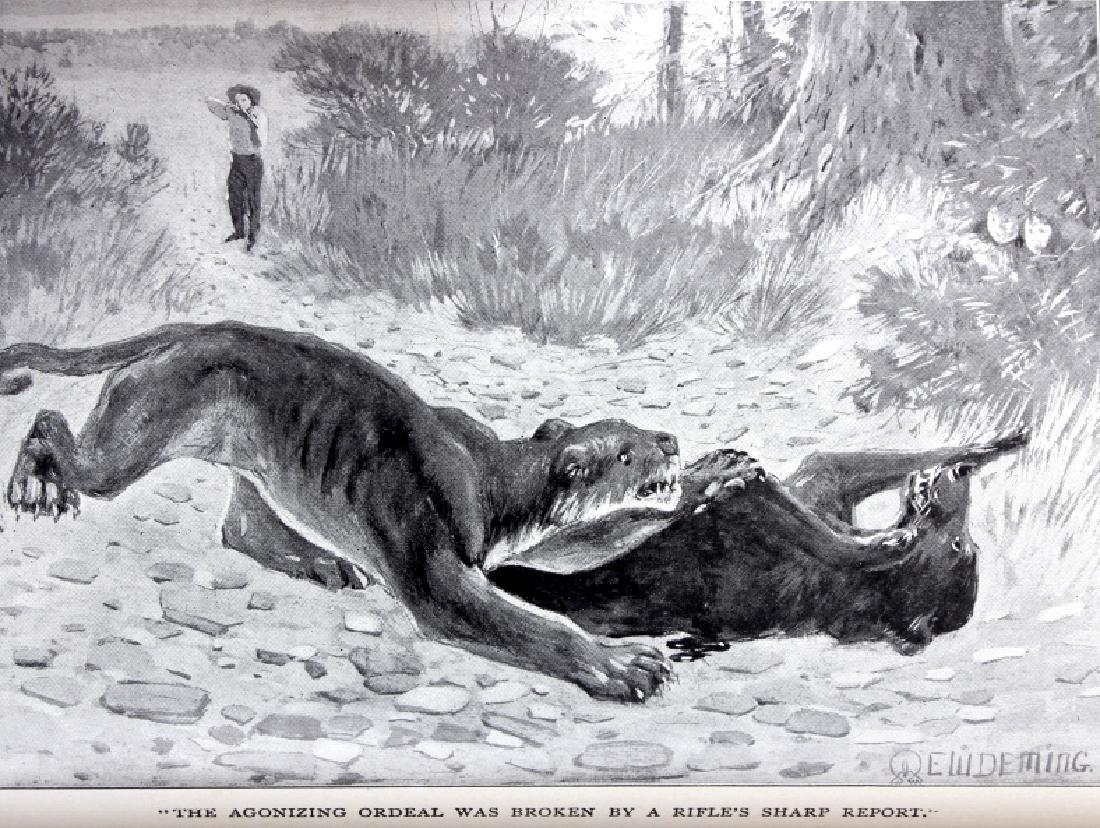 Last of the Great Scouts Buffalo Bill 1st Ed. 1899 - 11