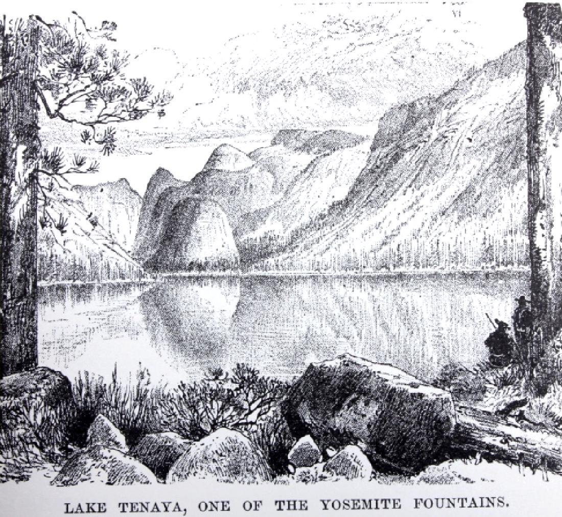 The Mountains of California by John Muir 1898 - 8