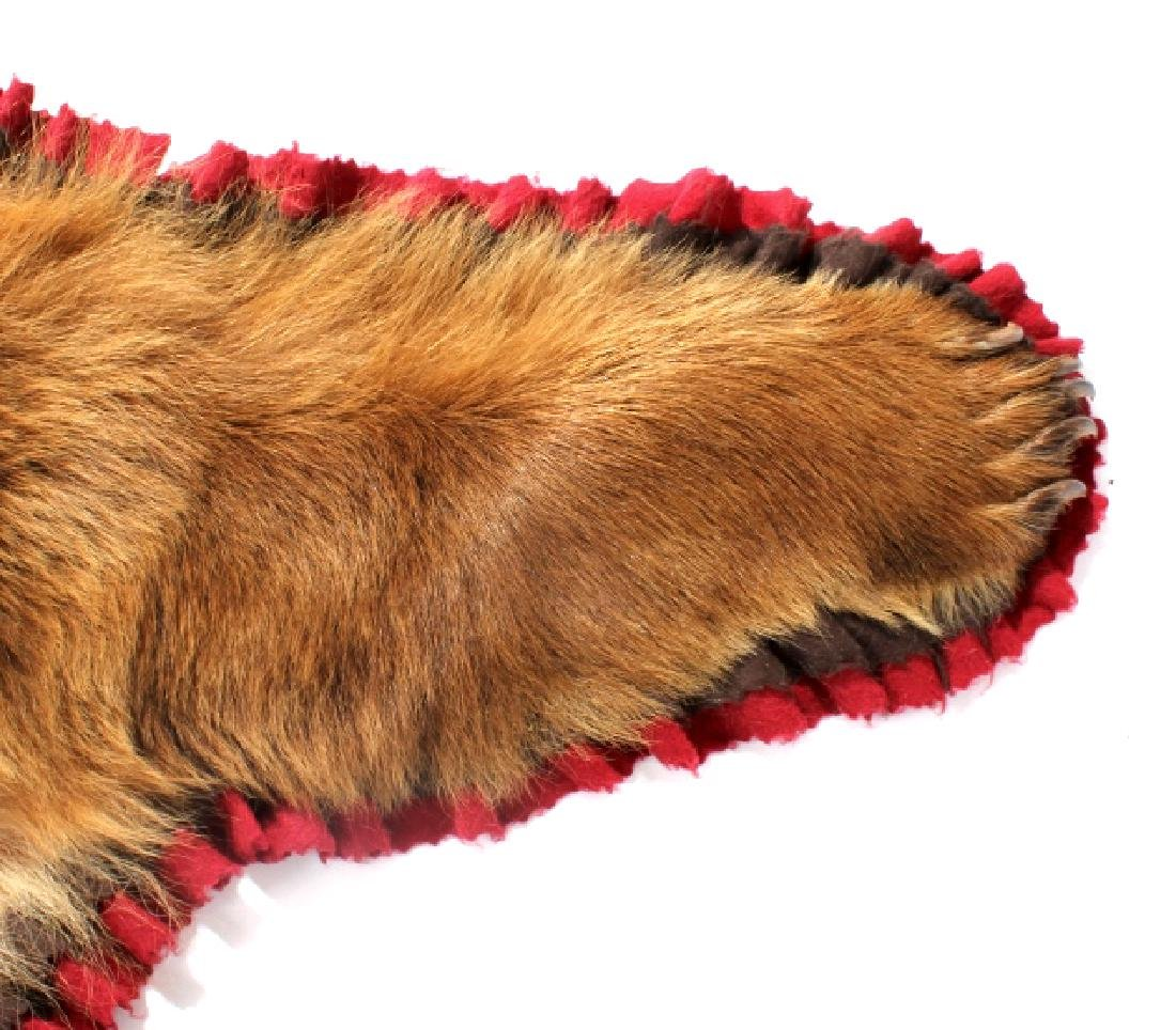 Montana Cinnamon Black Bear Taxidermy Trophy Rug - 6