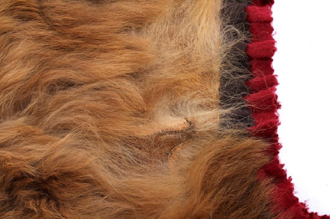 Montana Cinnamon Black Bear Taxidermy Trophy Rug - 9
