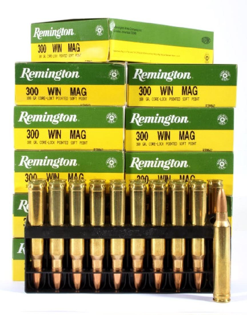 382 Rounds of 300 Winchester Magnum - 2