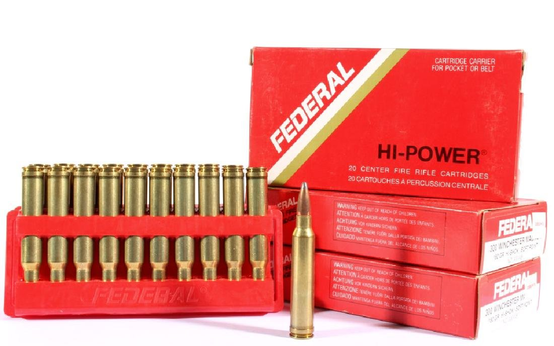 382 Rounds of 300 Winchester Magnum - 4
