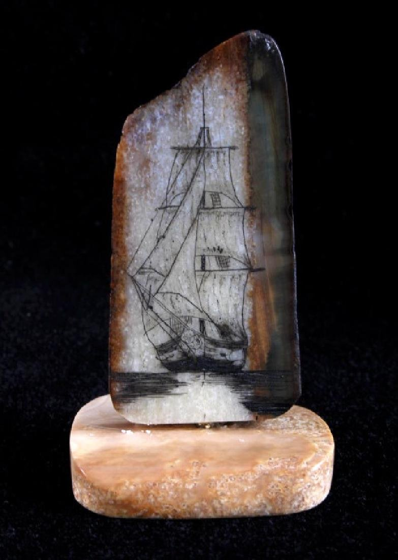 Ancient Mammoth Tusk Scrimshaw