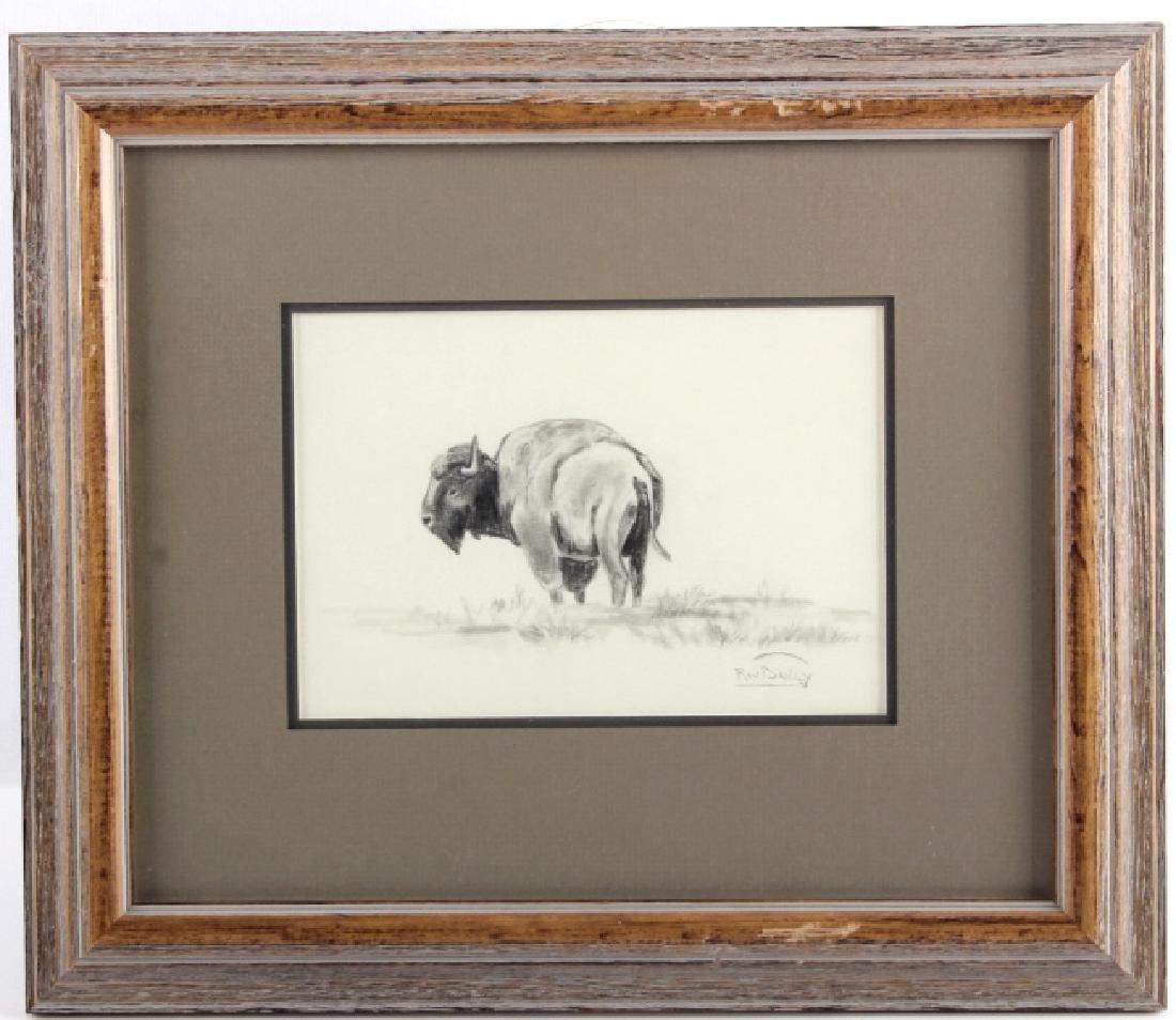 Original Ron Bailey Framed Buffalo Pencil Sketch