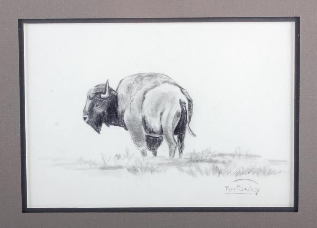 Original Ron Bailey Framed Buffalo Pencil Sketch - 2