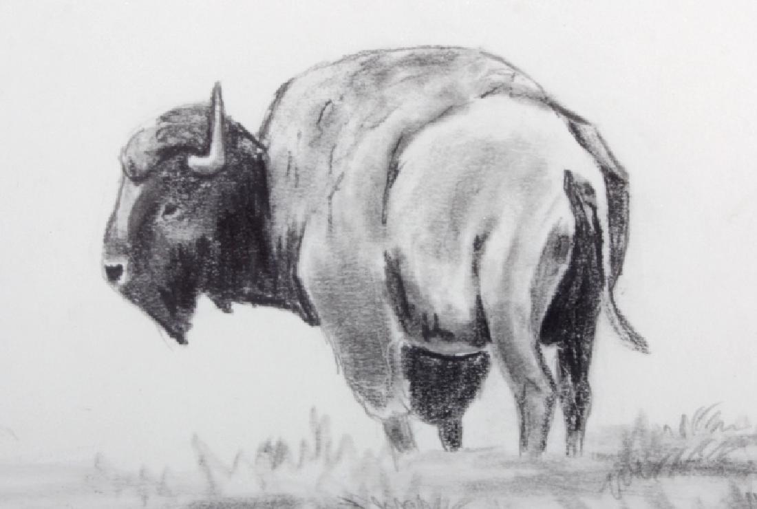 Original Ron Bailey Framed Buffalo Pencil Sketch - 3