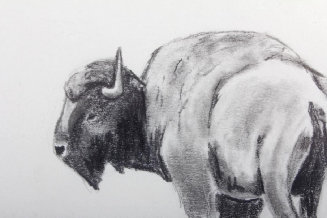Original Ron Bailey Framed Buffalo Pencil Sketch - 4