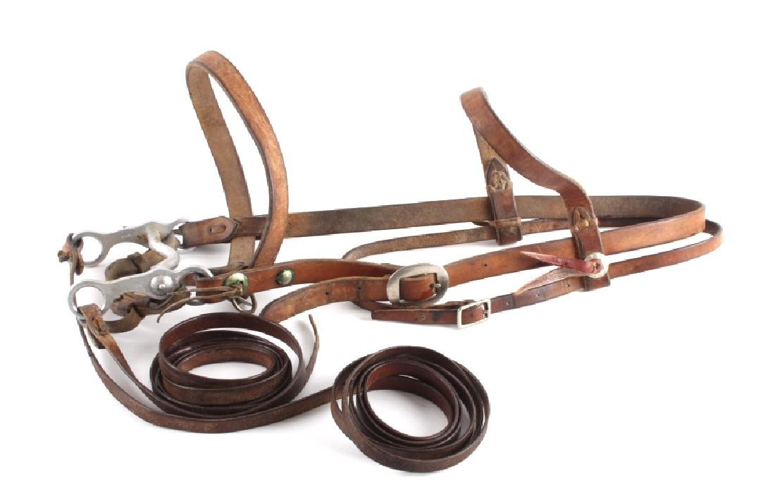 Leather Headstall with Renalde Aluminum Bit