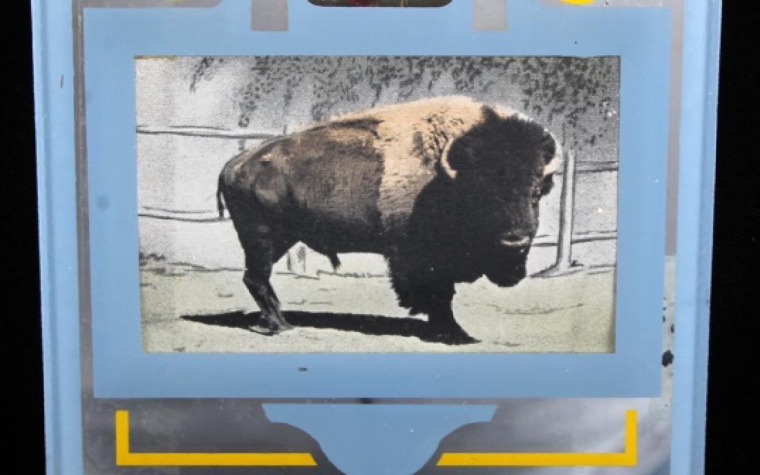 Buffalo Bar Advertising Mirror Billings Montana - 5