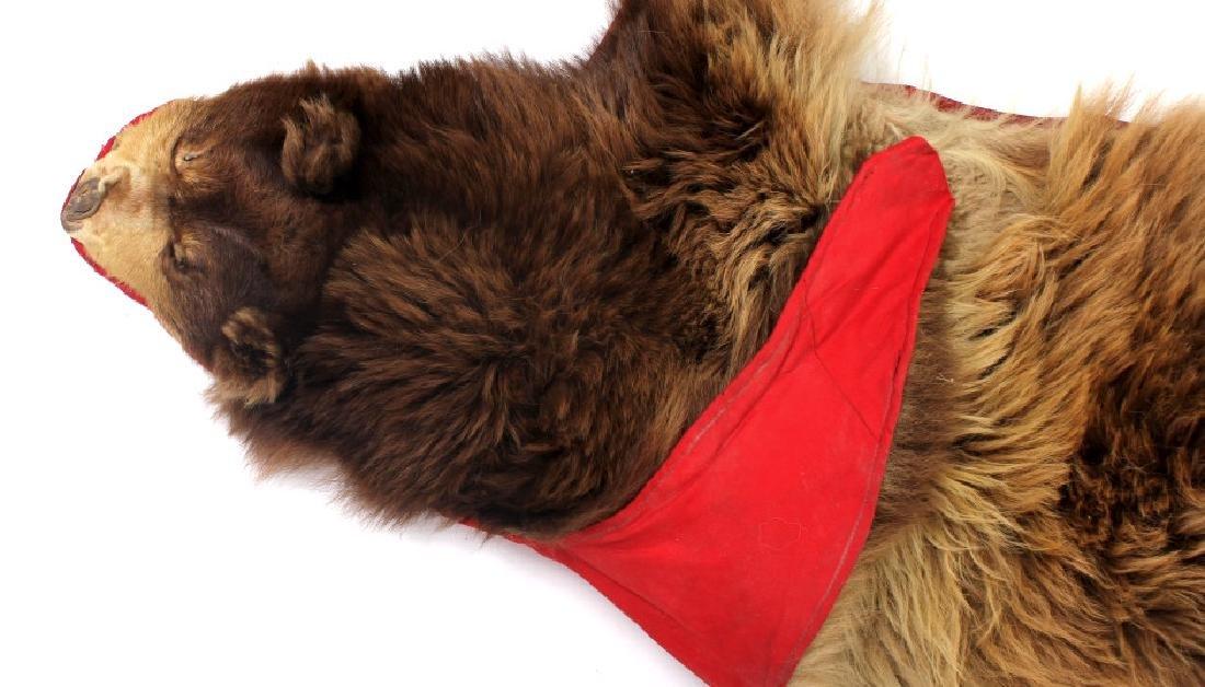 Montana Cinnamon Black Bear Fur Hide - 10