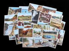 Yellowstone National Park Postcard Collection