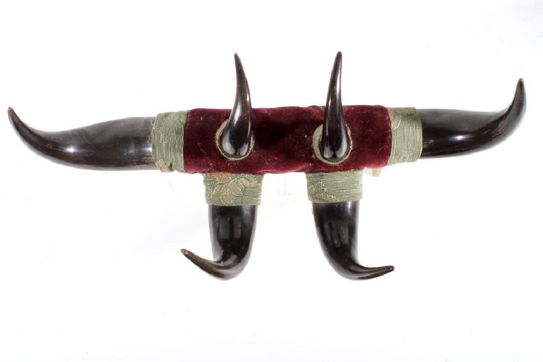 Antique Victorian Western Buffalo Steer Horn Rack