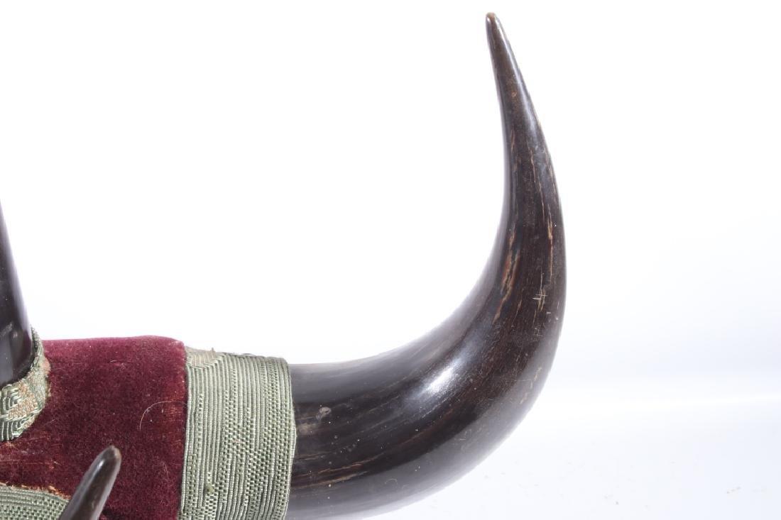 Antique Victorian Western Buffalo Steer Horn Rack - 3