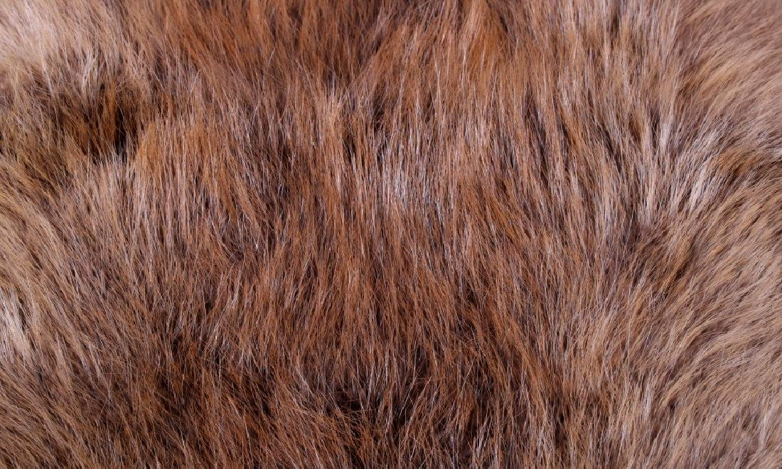 Two Tanned Montana Beaver Pelts - 8