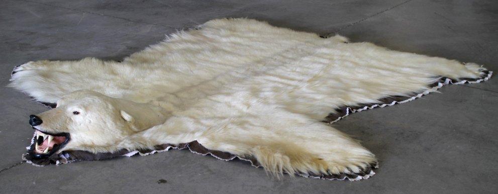 Polar Bear Rug by Jonas Brothers