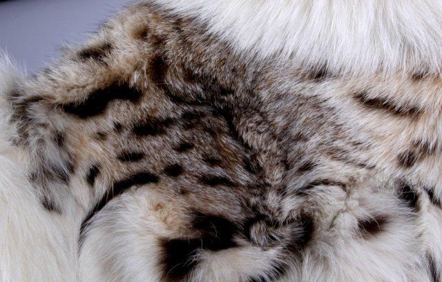 Montana Lynx Fur Vest by Lloyd's - 5