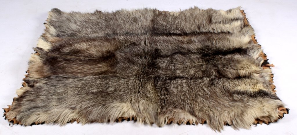 Antique Grey Wolf Fur Blanket This is an early ant - 2