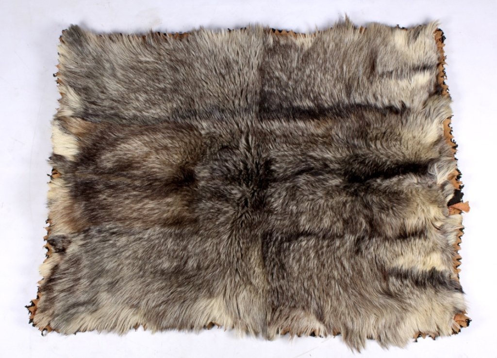 Antique Grey Wolf Fur Blanket This is an early ant - 3