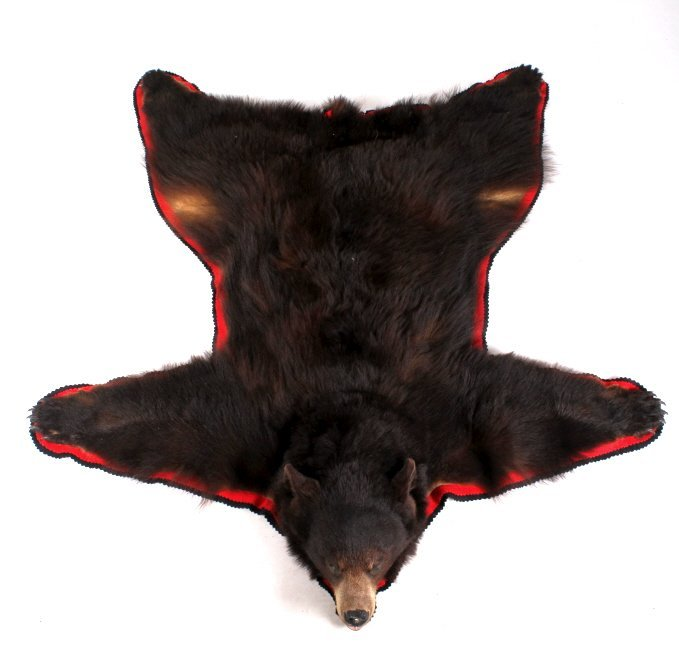 Montana Cinnamon Black Bear Trophy Rug