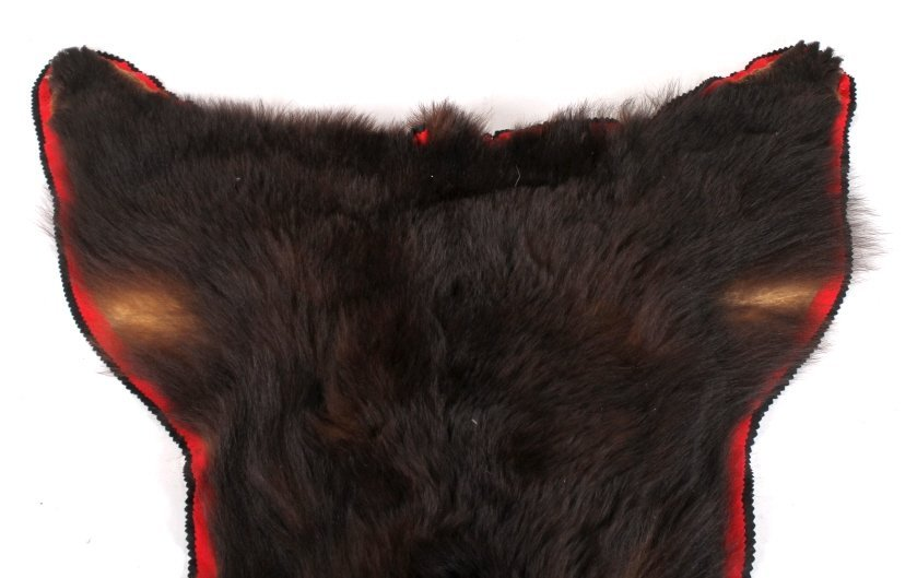 Montana Cinnamon Black Bear Trophy Rug - 2
