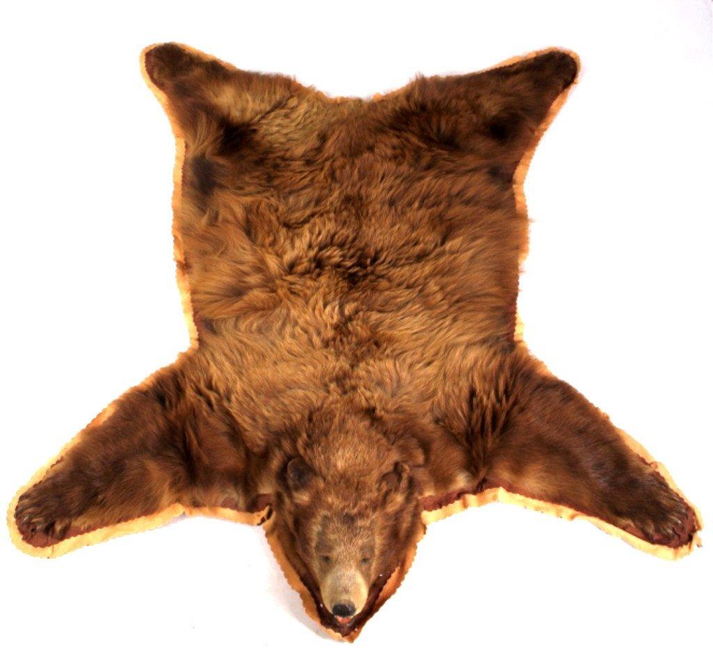 Montana Cinnamon Brown Bear Rug