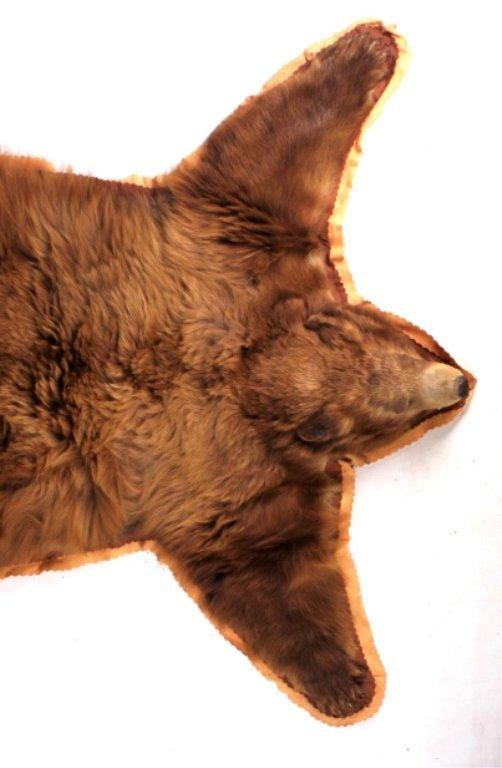 Montana Cinnamon Brown Bear Rug - 2