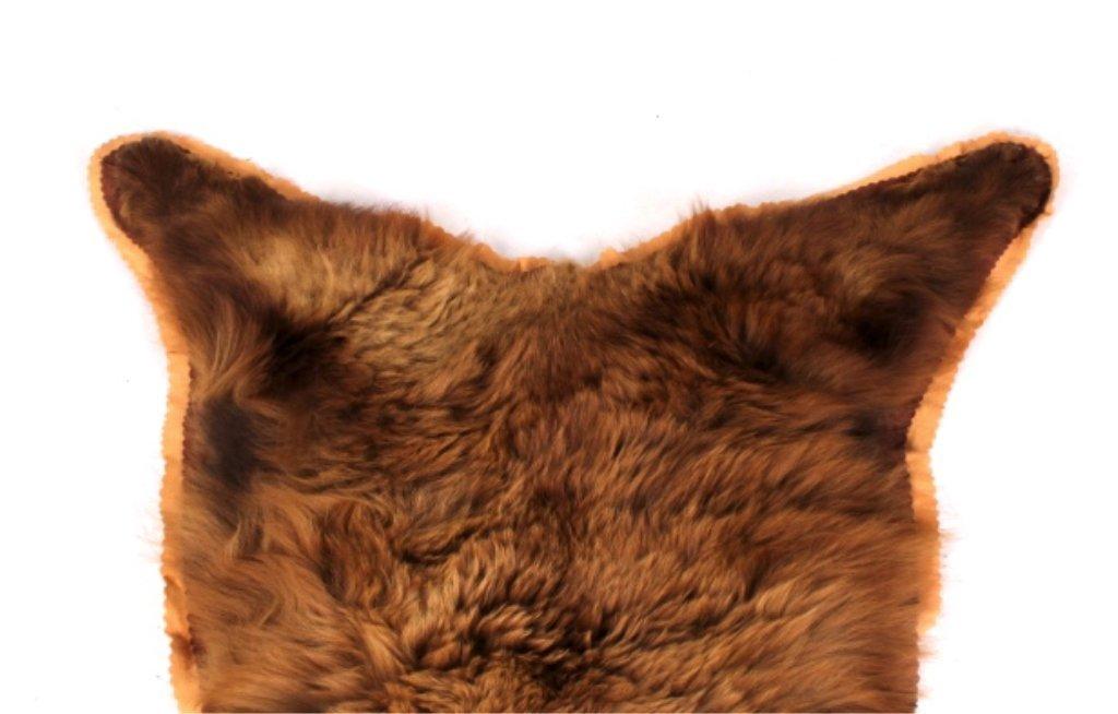 Montana Cinnamon Brown Bear Rug - 4