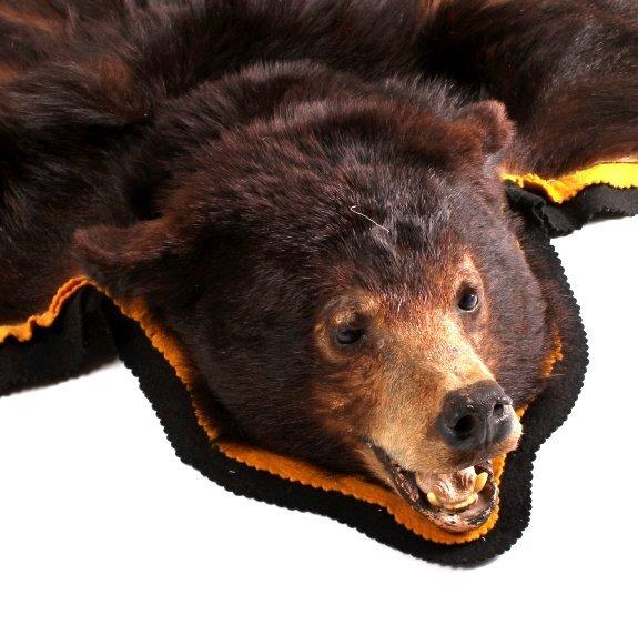 Montana Black Bear Rug - 4