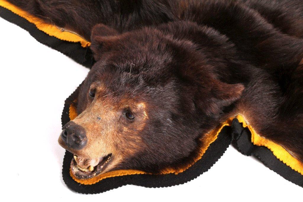 Montana Black Bear Rug - 7