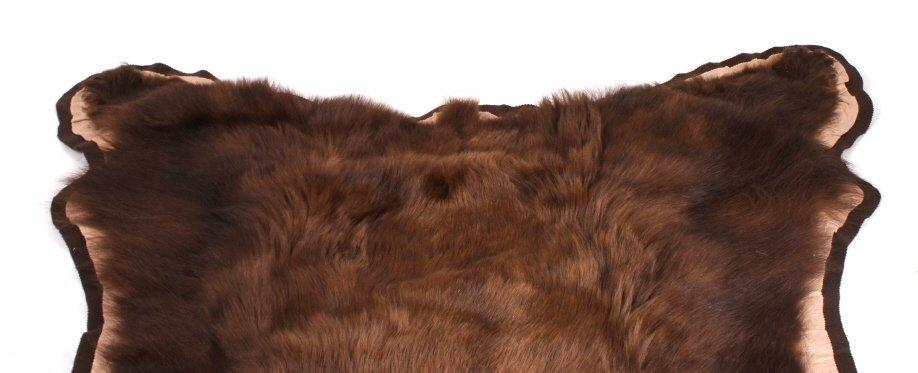 Montana Trophy Cinnamon Black Bear Rug - 3