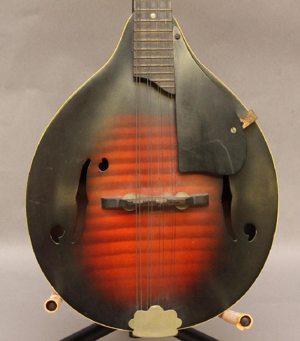 Harmony Monterey Mandolin - 2